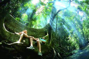 eco travel ταξίδια