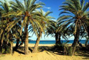 ελληνικές παραλίες - Βάι Κρήτης