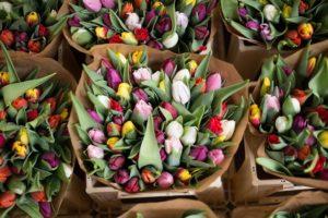 Άμστερνταμ - Αγορά Λουλουδιών