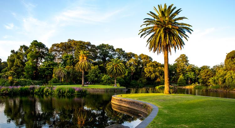 Αξίζει να επισκεφθείς το βοτανικό πάρκο της Μελβούρνης την Άνοιξη!