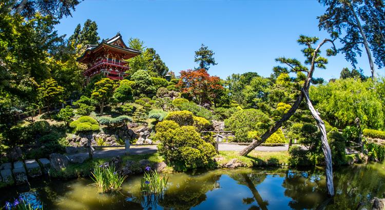 Ανάκαλυψε το Golden Gate Park ένα από τα ομορφότερα μέρη στο San Francisco.