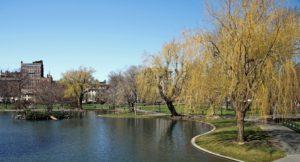 48 ώρες στη Βοστώνη - Φωτογραφία Public garden
