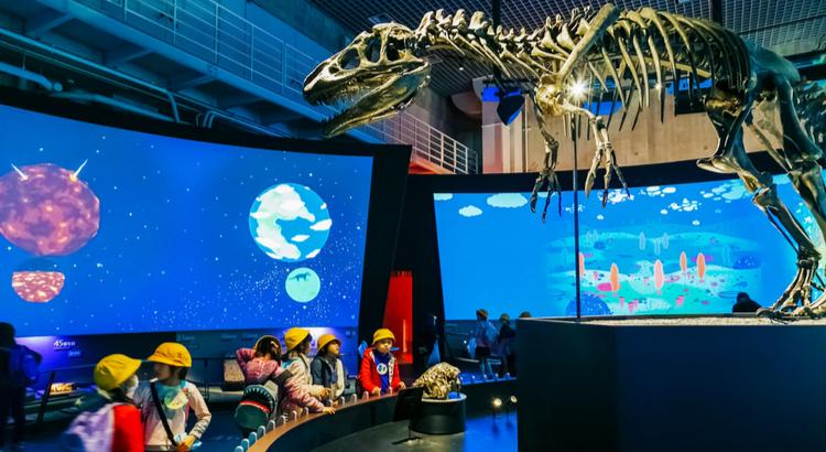 Ταξίδεψε οικονομικά στο Τόκιο και δες το εθνικό μουσείο φυσικής και επιστημών