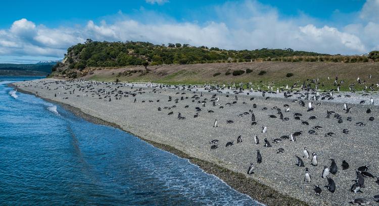 Ανερχόμενος προορισμός στη Νότια Αμερική το νησί Μαρτίγιο της Αργεντινής
