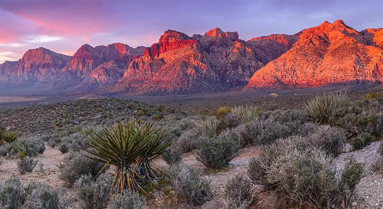 Red Rock Canyon, ένα από τα καλύτερα μέρη στο Λας Βέγκας