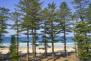 Σίδνεϊ οικονομικά_ Φωτογραφία_Manly beach