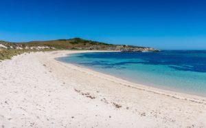 48 ώρες Περθ-Φωτογραφία Rottnest Island