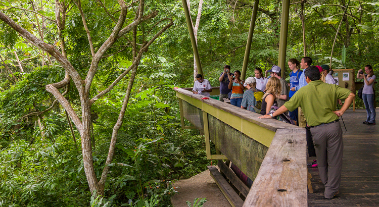 Panama Rainforest Discovery Center, ένα από τα μέρη που πρέπει να δεις στο Panama City